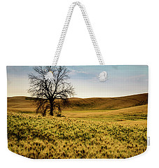 Solitary Tree Weekender Tote Bag by Chris McKenna