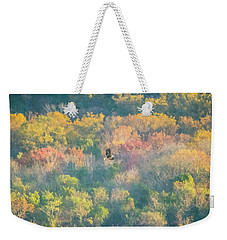 Weekender Tote Bag featuring the photograph Solo Eagle With Fall Colors by Jeff at JSJ Photography
