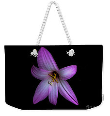 Weekender Tote Bag featuring the photograph Solo In Pink by Judy Hall-Folde