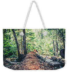 Weekender Tote Bag featuring the photograph Somber Walk- by JD Mims