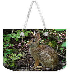 Weekender Tote Bag featuring the photograph Some Bunny Stopped By by Bill Pevlor