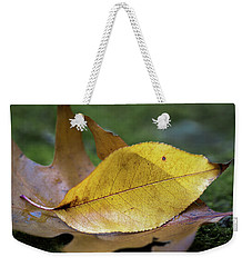 Weekender Tote Bag featuring the photograph Something Fishy by Dale Kincaid