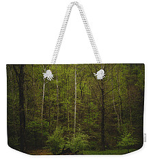 Weekender Tote Bag featuring the photograph Somewhere In The Woods by Shane Holsclaw