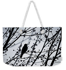 Weekender Tote Bag featuring the photograph Song Bird Silhouette by Terry DeLuco