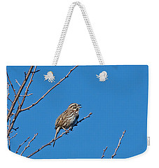 Weekender Tote Bag featuring the photograph Song Sparrow by Michael Peychich