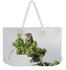 Song Sparrow Port Jefferson New York Weekender Tote Bag