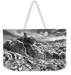 Sonora Desert Weekender Tote Bag