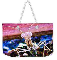 Sonoran Desert Ground Mantis Weekender Tote Bag