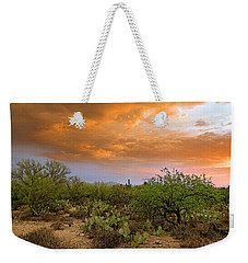 Weekender Tote Bag featuring the photograph Sonoran Desert H11 by Mark Myhaver