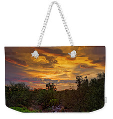 Weekender Tote Bag featuring the photograph Sonoran Sonata H01 by Mark Myhaver