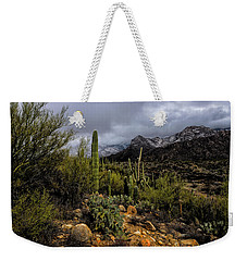 Sonoran Winter No.1 Weekender Tote Bag