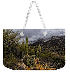 Weekender Tote Bag featuring the photograph Sonoran Winter No.3 by Mark Myhaver