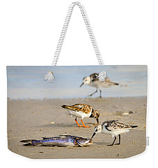 Weekender Tote Bag featuring the photograph Sorry Buddy by Debra Martz