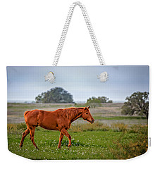 Weekender Tote Bag featuring the photograph Southern Field by Melinda Ledsome