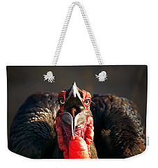 Southern Ground Hornbill Swallowing A Seed Weekender Tote Bag
