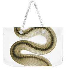 Southern Pacific Rattlesnake, X-ray Weekender Tote Bag