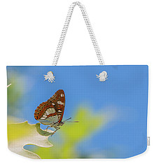 Southern White Admiral - Limenitis Reducta Weekender Tote Bag