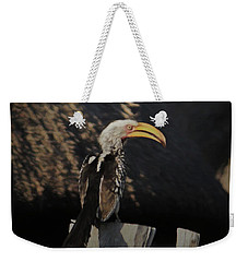 Weekender Tote Bag featuring the digital art Southern Yellow Billed Hornbill by Ernie Echols