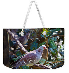 Weekender Tote Bag featuring the photograph Speckle Pigeon by Donna Brown