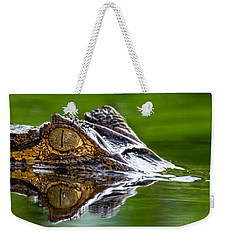Spectacled Caiman Caiman Crocodilus Weekender Tote Bag by Panoramic Images