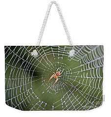 Spider In A Dew Covered Web Weekender Tote Bag