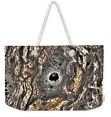 Weekender Tote Bag featuring the photograph Spider's House by Cassandra Buckley