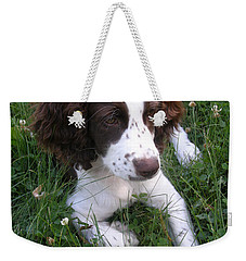 Weekender Tote Bag featuring the photograph Spinger Spaniel Pup by Angie Rea