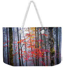Weekender Tote Bag featuring the photograph Splash Of Colour by Elena Elisseeva