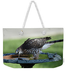 Water And The Hawk Weekender Tote Bag