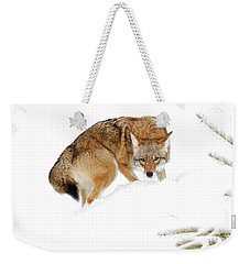 Spot On Weekender Tote Bag by Steve McKinzie