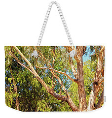 Weekender Tote Bag featuring the photograph Spot The Koala, Yanchep National Park by Dave Catley