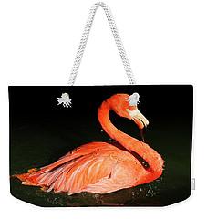 Spotlight On A Bathing Flamingo Weekender Tote Bag