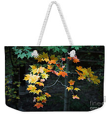 Spotlight On Fall Weekender Tote Bag