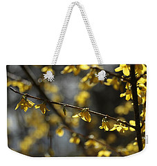 Weekender Tote Bag featuring the photograph Spotlights  by Connie Handscomb