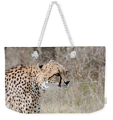 Weekender Tote Bag featuring the photograph Spotted Beauty 2 by Fraida Gutovich