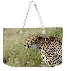 Weekender Tote Bag featuring the photograph Spotted Beauty 3 by Fraida Gutovich