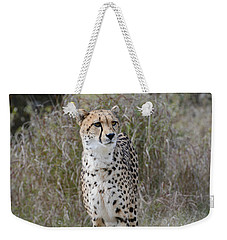 Weekender Tote Bag featuring the photograph Spotted Beauty by Fraida Gutovich
