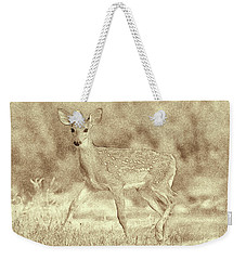 Weekender Tote Bag featuring the photograph Spotted Fawn by Jim Lepard