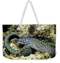 Spotted Moray Eel Weekender Tote Bag