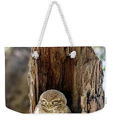 Spotted Owlet Weekender Tote Bag