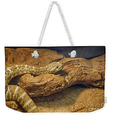 Spotted Rattlesnake   Blue Phase Weekender Tote Bag by Anne Rodkin