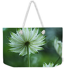 Botanica .. Spray Of Light Weekender Tote Bag by Connie Handscomb