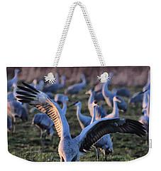 Spread Your Wings Weekender Tote Bag by Shari Jardina