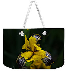 Weekender Tote Bag featuring the photograph Spring 2016 19 by Cendrine Marrouat