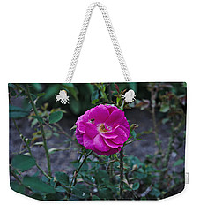 Weekender Tote Bag featuring the photograph Spring 2016 29 by Cendrine Marrouat