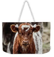 Spring Baby Weekender Tote Bag