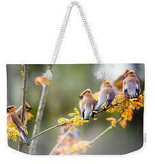 Weekender Tote Bag featuring the photograph Spring Beauties  by Parker Cunningham