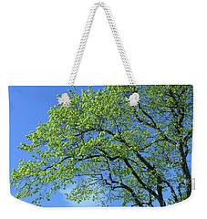 Spring Blue And Green Weekender Tote Bag