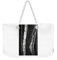 Weekender Tote Bag featuring the photograph Spring Cleaning by Jeffrey Jensen