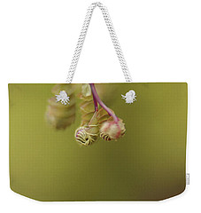 Weekender Tote Bag featuring the photograph Spring Coming 2017 by Jeff Burgess